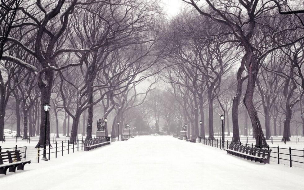 Earth-Winter-74453